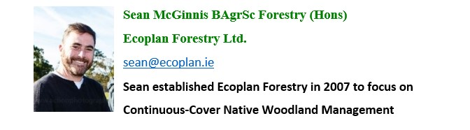 Sean McGinnis Ecoplan Forestry